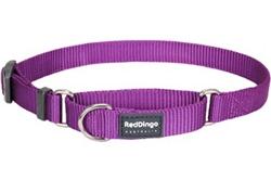 Purple Classic Martingale Collars