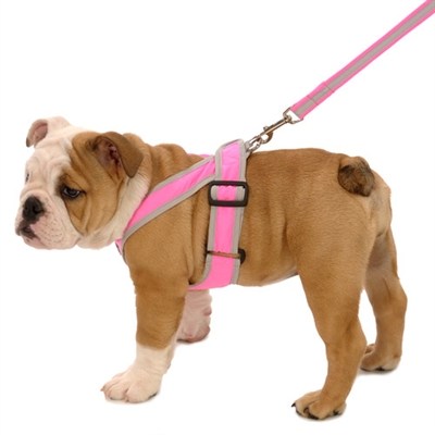PRECISION FIT Solid Nylon Sport Harnesses for Small & Large Dogs