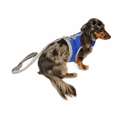 ATHLETIC MESH VEST Harness for Teacup & Small Dogs