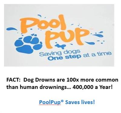 Paws Aboard PoolPup Steps