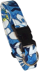 Pacific Blue Beach Dog Collars and Leashes