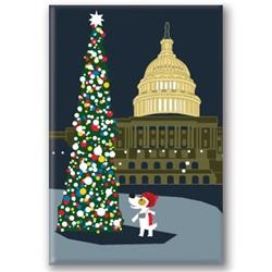 DC, Capitol Building - Fridge Magnet