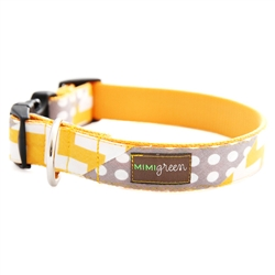 'Stewie' Chevron & Polka Dot Collars & Leashes