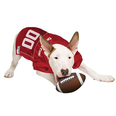 Alabama Dog Jersey