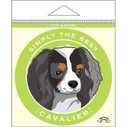 Cavalier, Tricolor - Car Magnet