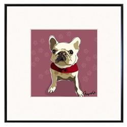 Framed Print: French Bulldog, White