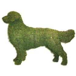 Topiary - Golden Retriever