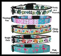 Bird Collection Nylon Collars & Leads