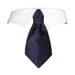 Colton Shirt Collar