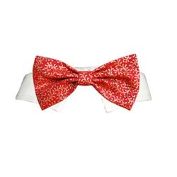 Holly Bow Tie