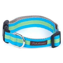Bright Aqua/Green Stripe Collection