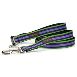 Green/Navy/PurpleStripe Collection