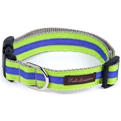 Neon Green/Purple Stripe Collection