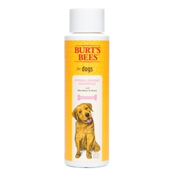Burt's Bees™ Hypoallergenic Shampoo, 16 oz. Bottle