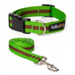 Green Classic Stripe Collars & Leads
