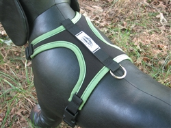 "Adventure Harness: the ""Original"""