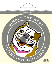 English Bulldog - Car Magnet