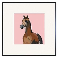 Framed Print: Horse, Arabian