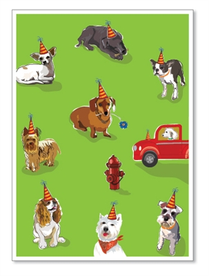 Birthday: Many Dogs