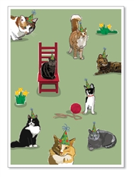 Birthday: Many Cats