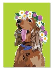 Birthday: Springer with flower headband