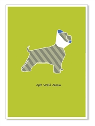Get Well: Striped dog with head cone