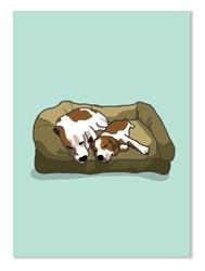 Friendship: Two Beagles