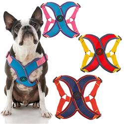 Comfort X Step-In Harness V2 (#04310)