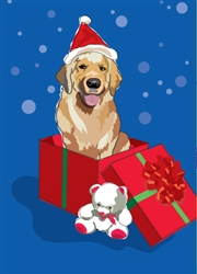 Golden Retriever in Gift Box