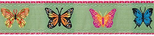 """Butterflies- 3/4"""" Collars, Leashes and Harnesses"""