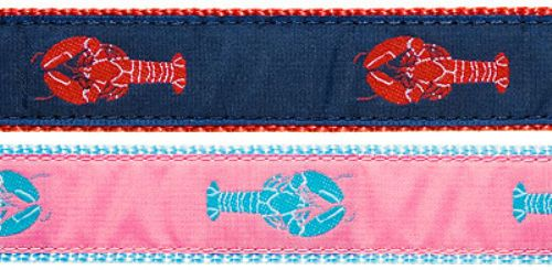 "Lobster- 3/4"" Collars, Leashes and Harnesses"