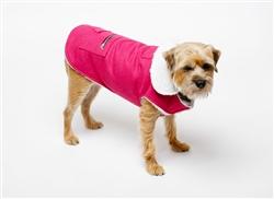 Coat   Canine Styles Wool Coat