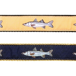 """Snook - 3/4"""" Collars, Leashes and Harnesses"""