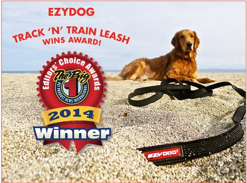 EzyDog Track N Train Leash