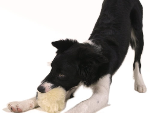 AiKiou Faux Fur Squeak Dog Toys