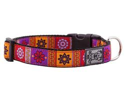 Collars & Leads - Trendy Mehndi