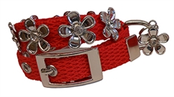 Lucy Red Collars and Leads by Huxley & Kent
