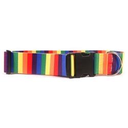 """Rainbow 2"""" Dog Collar"""