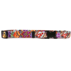 Amazon Floral Collection