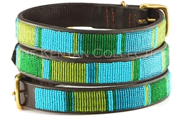 Lagoon Collar & Leash Collection