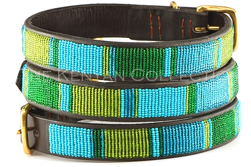 Lagoon Collar & Leash Collection