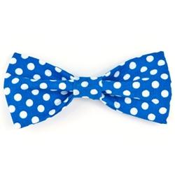 Bow Tie - Royal/White Dots