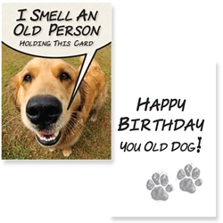 Birthday – I Smell an Old Person (6 pack)