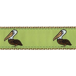 "Pelican- 3/4"" Collars, Leashes and Harnesses`"
