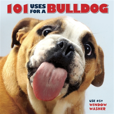 101 Uses for a Bulldog