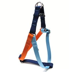 Color block harness