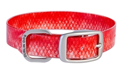KOA Collar Red Snapper