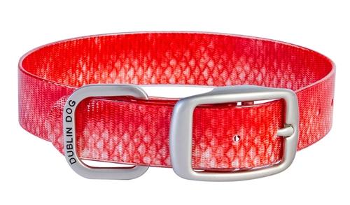 KOA Collar Red Snapper