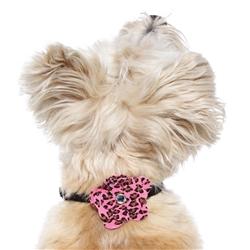 Pink Leopard Garden Flower Collar Sliders