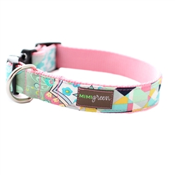 'Luca' Collars & Leashes